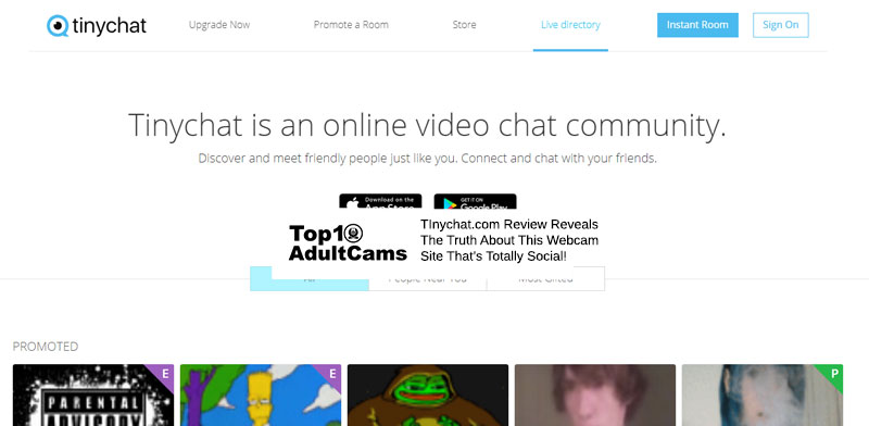 Tinychat screenshot